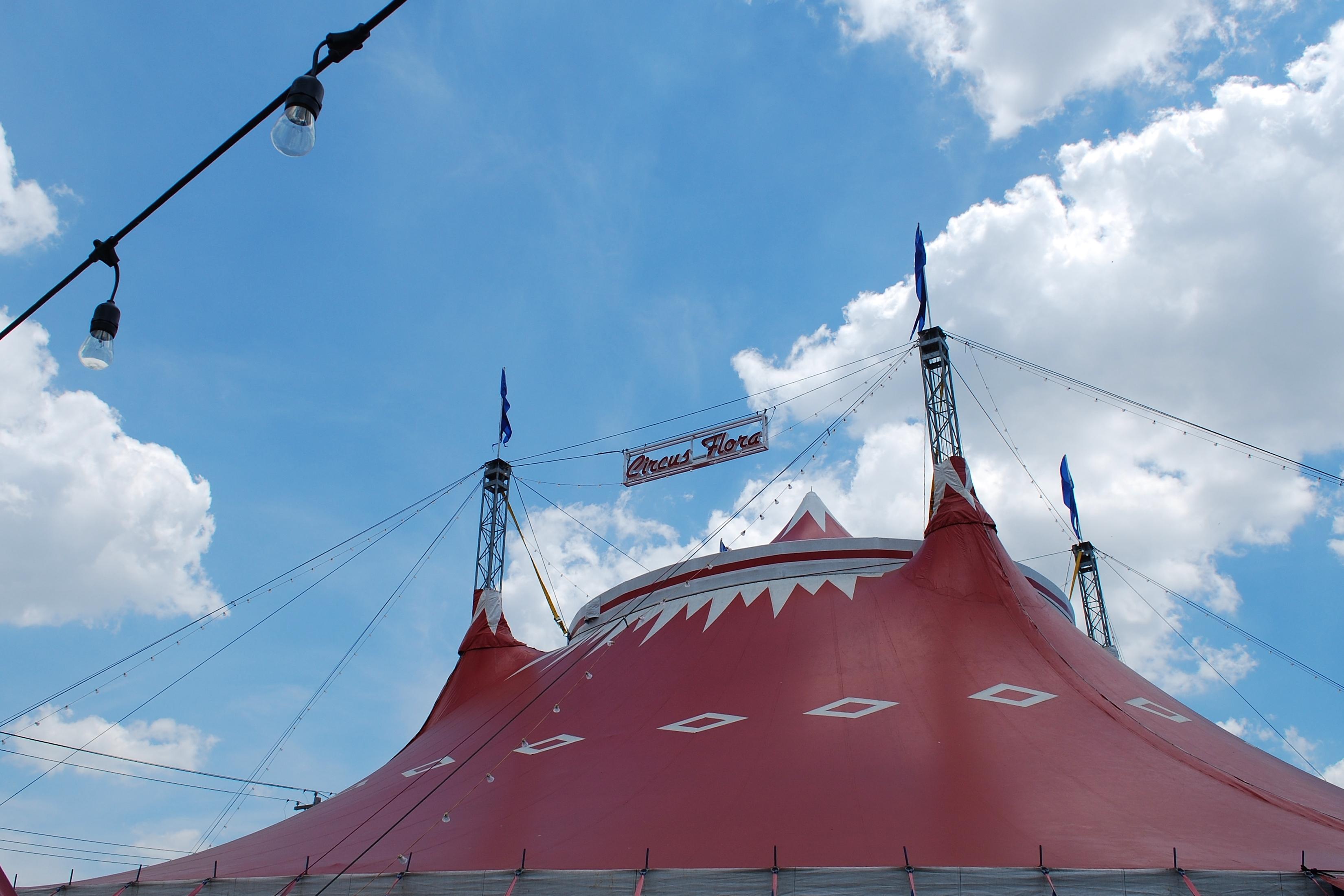 circus flora 2