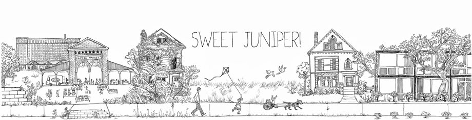 sweet juniper